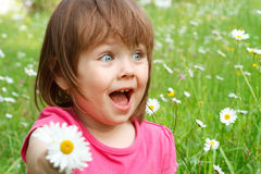 Little girl in flower field Royalty Free Stock Photography