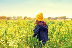 Little girl flower field. Little girl walking on the flower field back to camera Stock Photo