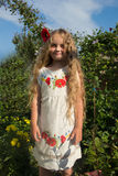 Little girl with a flower in her hair. The photo shows a little girl in a dress with flowers and red poppies in her hair Royalty Free Stock Photography