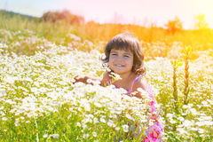 Little girl on the flower meadow Stock Photography