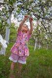 Little girl in flowered garden Stock Photos