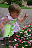 Little girl with flowers. Little girl play with flowers and smile on nature stock photography
