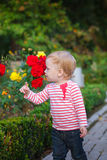 Little girl and flowers of roses Stock Photography