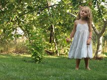 Little girl with an apple in her hand in the middle of the garden. Little girl with flowing blond hair in a white sundress with a red apple in her hand in the stock image
