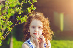 Little girl folded her hands a heart shaped, background toning fo. Sunny girl folded her hands a heart shaped, background toning for instagram filter Royalty Free Stock Photo
