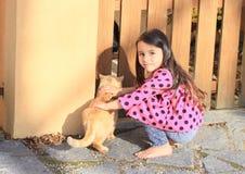 Little girl stroking a cat Stock Photos