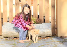 Little girl stroking a cat Royalty Free Stock Photos
