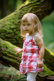 Little girl in the forest Stock Images