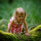 Little girl in the forest Royalty Free Stock Photos