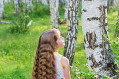 Little girl in the forest. Little blond girl with wavy hair in the forest Royalty Free Stock Image