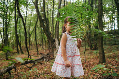 Little girl in the forest with ferns Royalty Free Stock Image
