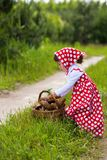 Little girl in the forest. royalty free stock images