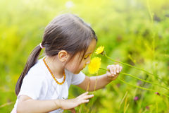 Little girl in the forest smells wonderful flowers and enjoy the Stock Photography