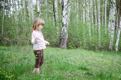 Little girl in the forest Royalty Free Stock Images