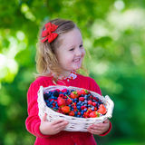 Little girl with fresh berries in a basket Stock Images