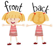 Little girl with front and back view Royalty Free Stock Photo
