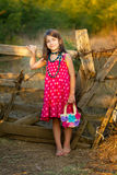 Little girl front of an old wooden fence Stock Photos