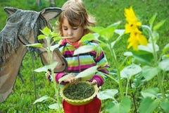 Little Girl for fun feeds wooden horse in garden Stock Image
