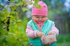 Little girl in a garden Stock Images