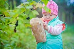 Little girl in a garden Stock Photos