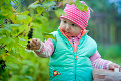 Little girl in a garden Royalty Free Stock Photography
