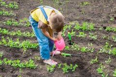 Little girl in garden Royalty Free Stock Photo