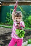 Little girl in the garden Royalty Free Stock Photography
