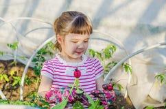 Little girl in the garden Stock Images