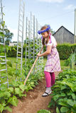 Little girl gardening royalty free stock image