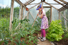 Little girl gardening in greenhouse stock image