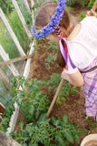 Little girl gardening in greenhouse Stock Images