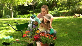 Little girl gardening with her mother stock footage