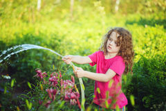 Little girl gardening on sunny day watering flower in the garde royalty free stock images