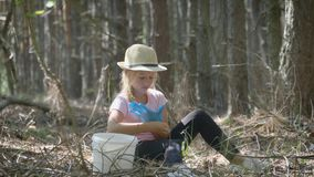 Little girl gather mushrooms in the forest on a sunny day. Mushrooms picking, season for mushrooms. Lovely girl with stock footage