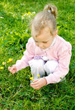 Little girl gathering flowers Royalty Free Stock Photos