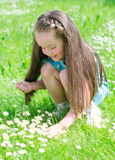 Little girl gathering flowers Royalty Free Stock Images