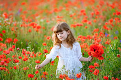 Little girl gathers a bouquet of wild red flowers Stock Photo