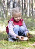 Little girl gathers mushrooms Royalty Free Stock Photos