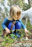 Little girl gathers mushrooms Royalty Free Stock Image