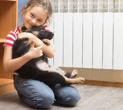 little girl and a German Shepherd puppy Stock Image