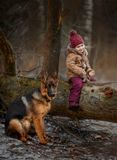 Little girl with German shepherd 6-th months puppy at early spring royalty free stock photo