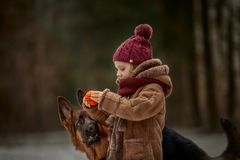 Little girl with German shepherd 6-th months puppy at early spring. Forest royalty free stock images