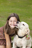 Little girl getting kiss from dog stock image