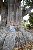 Little girl and the Giant. Base Roots Giant Sequoia Tree. Nelson , New Zealand Stock Image