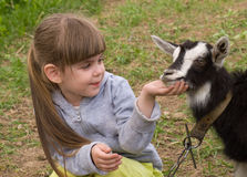 Little girl with goat Royalty Free Stock Photos