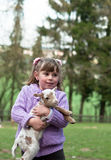 Little girl with a goat. A 5 year old girl smiles as she holds a goat in a field Royalty Free Stock Photo