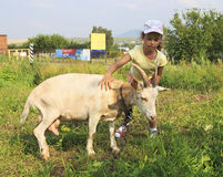 Little girl with goat. Royalty Free Stock Image