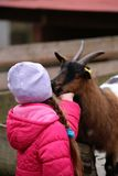 A little girl with a goat Stock Photos