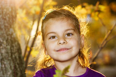Little girl in golden light Royalty Free Stock Photo