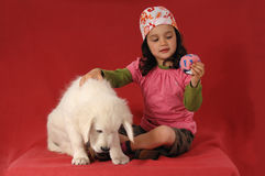 Little girl with a Golden retriever Stock Photo